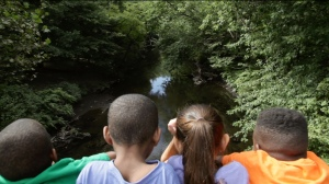 The backs of four students' heads looking out onto the Bronx River